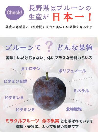 加工用生プルーン減農薬長野県産3キロ生食には向きません