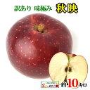 9月下旬発送 秋映 訳あり 葉とらず りんご  減農薬 長野県産 10キロ レビューを書いたら200円クーポン