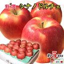 9月上旬〜中旬発送 シナノドルチェ りんご 減農薬 長野県産 5キロ レビューを書いたら200円クーポン
