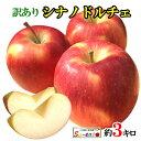 9月上旬発送 シナノドルチェ 訳あり りんご 減農薬 長野県産 3キロ レビューを書いたら200円クーポン