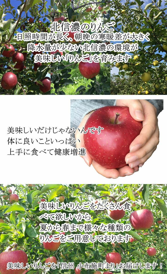 Su-eat(スイート)『訳あり葉とらず味極みりんご』