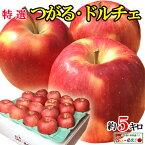 8月下旬発送 特選 つがる シナノドルチェ りんご 減農薬 長野県産 5キロ