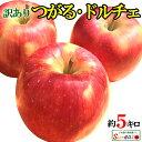 10%OFF 朝どれ 最新りんご 夏あかり 訳あり 葉とらず 味極み りんご 減農薬 長野県産 5キ ...
