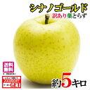 訳あり 葉とらず 味極み りんご シナノゴールド 減農薬 約5キロ