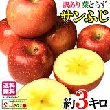 サンふじ 訳あり りんご 減農薬 長野県産 3キロ レビューを書いたら200円クーポン