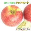 10月下旬 シナノスイート 訳あり りんご 減農薬 長野県産