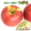 8月下旬発送 朝どれ つがる 訳あり りんご 減農薬 長野県産 約3キロ レビューを書いたら200円クーポン