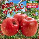 サンふじ りんご 訳有り 訳ありサンふじ 青森県産 家庭用 5kg 16〜20玉