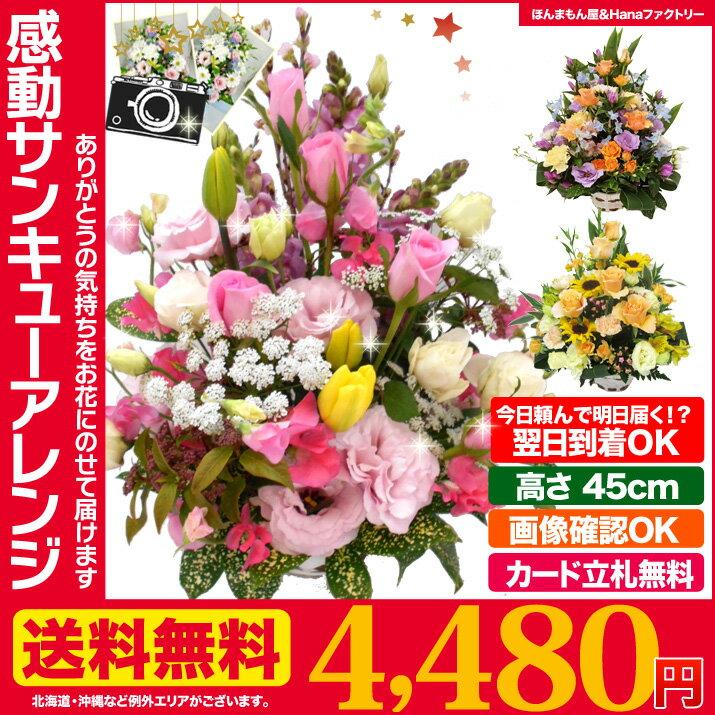誕生日 の 御祝い に お祝い 花 ギフト 感動サンキュー フラワーアレンジメント 送料無料 プレゼント 用ギフトボックスでお届け あす楽 正午まで