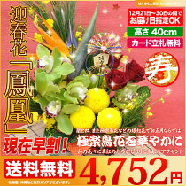 お正月のお花極楽鳥花をメインにした豪華絢爛迎春アレンジメント「鳳凰」