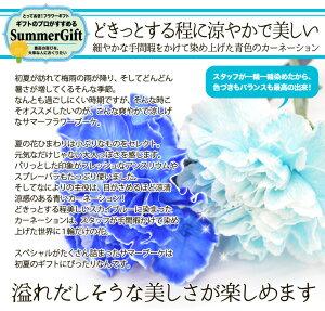 送料無料青いカーネーションの爽やかサマーブーケと鳥取銘菓焼酎カステラセット/父の日暑気払いサマーギフト