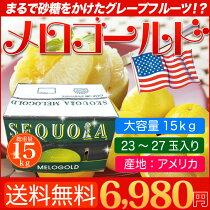 店長激オシ送料無料!メロゴールド4kgこれはまるで砂糖をふりかけたかけたグレープフルーツ!
