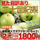 鳥取産 二十世紀梨 大玉 2kg 見た目 訳あり 100年以上愛され続けた青梨 送料無料 複数個購入でおまけ付き 20世紀梨 廿世紀梨