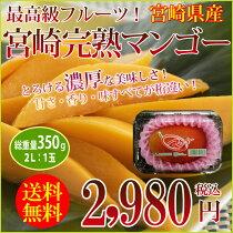 店長激オシ通常の44%OFF!とろける食感と濃厚な味わい宮崎産「完熟マンゴー」1玉