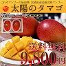 宮崎産 完熟 マンゴー 太陽のタマゴ 化粧箱入り 送料無料 糖度 外観が優れた完熟マンゴーです