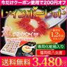 レインボーレッド 真っ赤な 果肉 の 美味しい キウイ 福岡県産 ギフト ボックスでお届け 送料無料