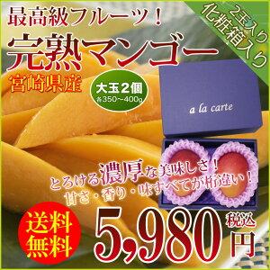 送料無料あまーい果汁ととろける果肉!大人気の宮崎産完熟マンゴー2玉