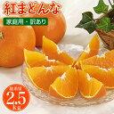 送料無料 愛媛産みかん 紅まどんな 2.5kg 訳あり 家庭用 柑橘 の 新品種 ゼリー のようなプ...