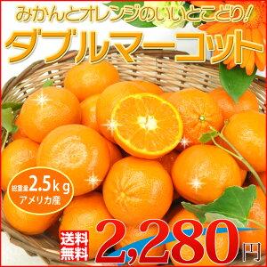【送料無料】みかんとオレンジいいとこどり!絶対おすすめ「ダブルマーコット」5kg【ゲリラセール】