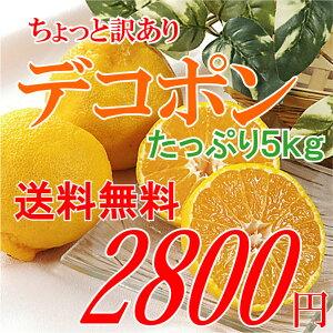 送料無料】柑橘の1番人気「デコポン」(訳あり家庭用)5kg