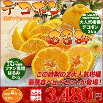 【送料無料】「はるみ」ち「デコポン」2大人気柑橘豪華食べ比べセット(訳あり家庭用)5kg