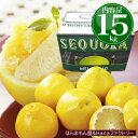 メロゴールド 約15kg 23〜27玉 送料無料 まるで砂糖をふりかけたかけたグレープフルーツ