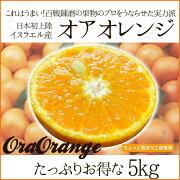 イスラエル オアオレンジ オラオレンジ