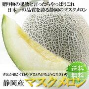 店長激オシ送料無料!日本一の品質を誇る静岡産マスクメロン1玉
