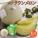 静岡産 クラウンメロン マスクメロン 1玉 送料無料 フルーツギフト 日本一の品質 お歳暮 お供え お祝い お見舞い