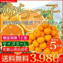 【送料無料】糖度センサー済み!糖度12.5度保障!和歌山県由良(ゆら)産「ゆらっこみかん」まずはお試し3kg入り