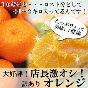 見た目が悪いだけで正品の70%OFF!果汁たっぷりのオレンジです店長激オシ!! ちょっと訳あり「...