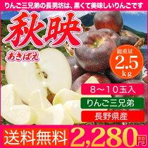 【送料無料】甘みと酸味のバランスが逸品!りんごさん兄弟のトップバッター秋映5kg(16〜18玉)
