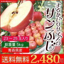 送料無料青森県産サンふじ小玉5kg23〜25玉りんごリンゴ