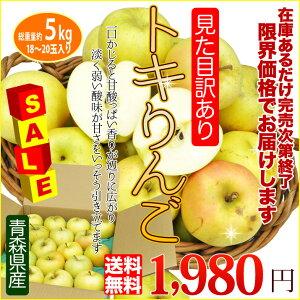【送料無料】甘さと香り、歯ごたえが三拍子そろった秋の青りんご「トキりんご」5kg