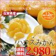 お中元 ギフト 送料無料 佐賀県産 ハウスみかん 1.2kg 皮が薄くて甘みたっぷりのハウスみかんです。 お中元ギフト フルーツギフト
