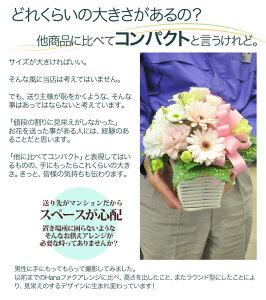 コミコミ3000円/リボンが選べるお供えHANAファクアレンジ/