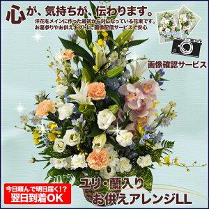 【送料無料フラワー】ユリ・蘭入りお供えアレンジLL5000お盆やお彼岸のお花、仏…