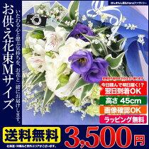 https://image.rakuten.co.jp/kk-jandf/cabinet/osonae/osonaebk-m-top2.jpg