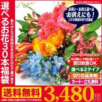 帰ってきたお花の福袋【原体30本入り】