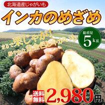 店長激オシ送料無料!まるで栗のような味わいのじゃがいも「インカのめざめ」たっぷり5kg