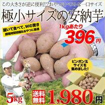 送料無料鹿児島県種子島産濃厚な味わいの『安納芋』(訳あり/極小サイズのみ)うれしい5kg