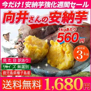 【送料無料】鹿児島県種子島産濃厚な味わいの『安納芋』(訳あり・無選別)3kg