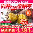 安納芋 種子島産 送料無料 訳あり 無選別 10kg さつまいも 焼き芋 はもちろん干し芋にも 翌日お届け