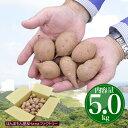 安納芋 種子島産 極小サイズ 送料無料 訳あり 5kg 小さ...
