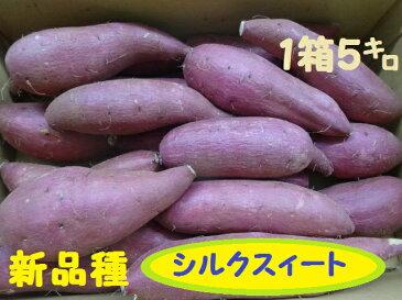 【送料無料】新物さつま芋『シルクスィート』家庭用訳有品1箱5kg送料無料で届けます。(沖縄除く)