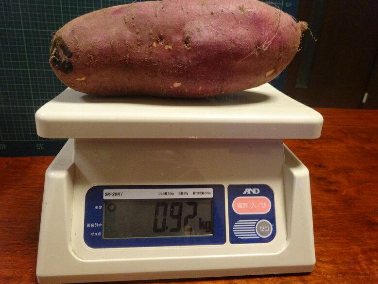 茨城産紅まさり家庭用得特大サイズ10kg(皆掛け)