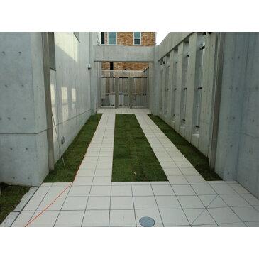 寒地型常緑ロール状芝生ケンタッキーブルーグラス【約1平米】