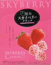 栃木 スカイベリー チョコクランチ 15個入りクリスマス ギフト お菓子 いちご イチゴ 土産 みやげ - ToyStep