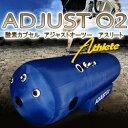 Adjust-2016-250