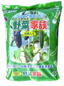 (配送区分A)畑はないけど野菜を作りたい〜!そんな方のために作りました♪袋をあけて苗を植える...